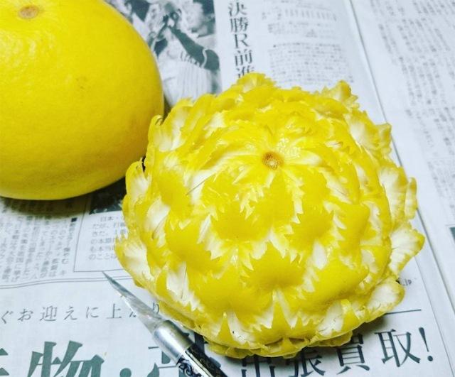 gaku-fruit-art-7