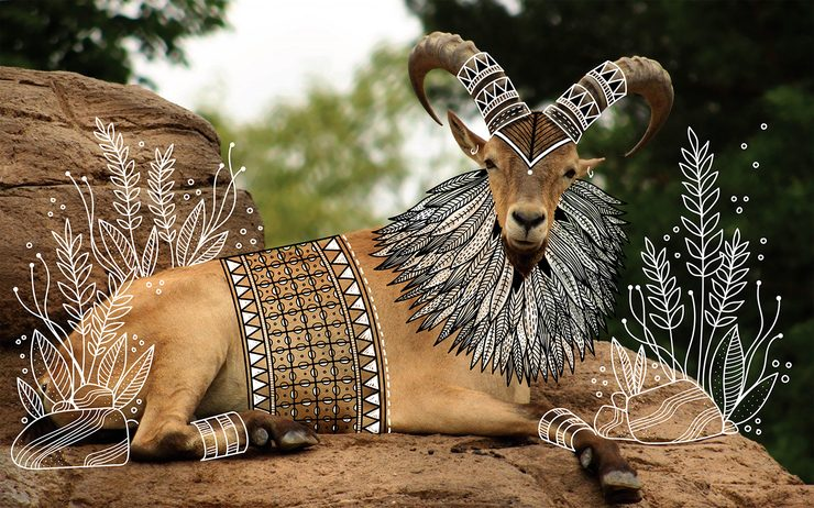 Illustrator-doodles-tribal-costumes-over-animal-photographs-02-740x462