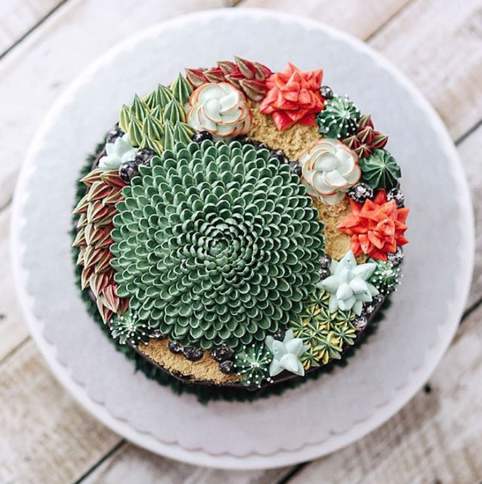 ivenoven-succulent-cakes-11