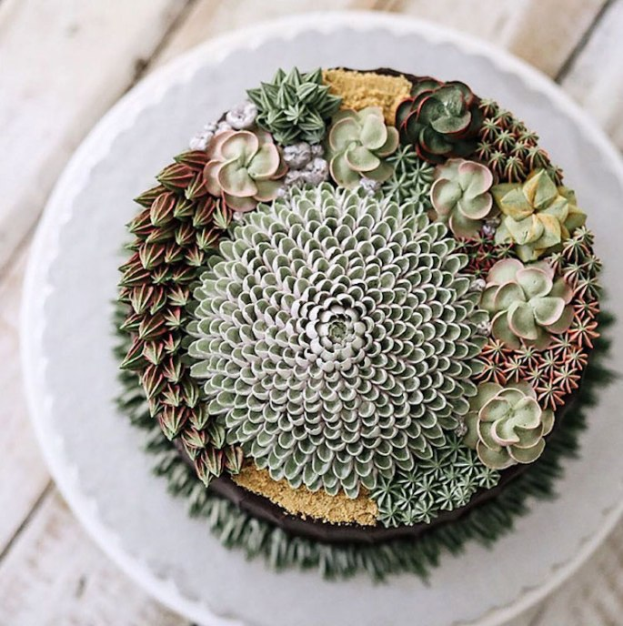 ivenoven-succulent-cakes-5