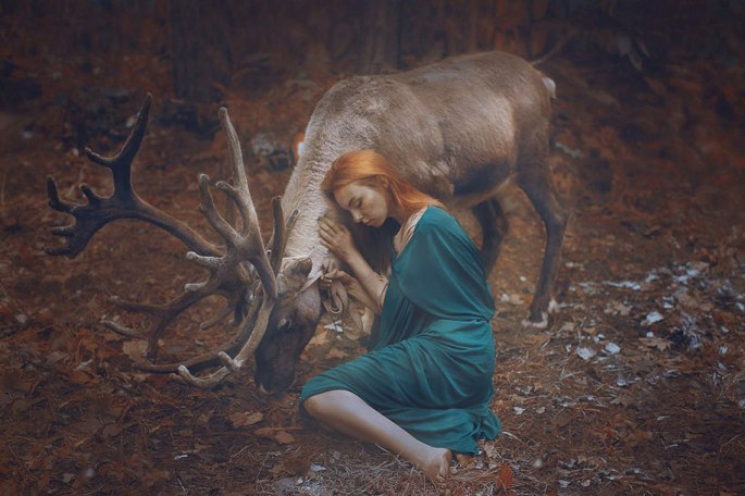 surreal-animal-human-portraits-katerina-plotnikova-17 - Copie