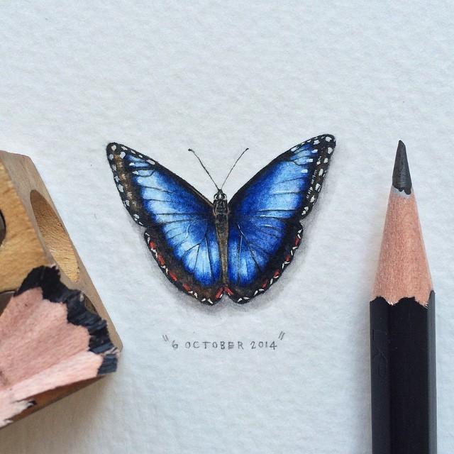 365postcardsforants-farfalla-640x640