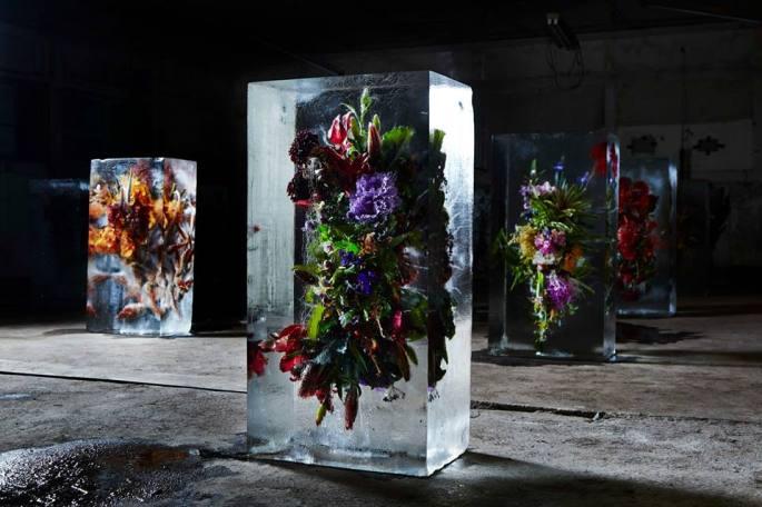iced-flowers-makoto-azuma-1