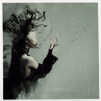Dark photo manipulations by Anja Millen