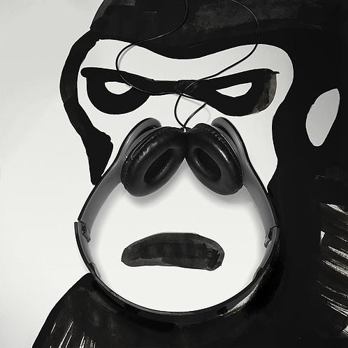 gorilla16s-498x498 - Copie