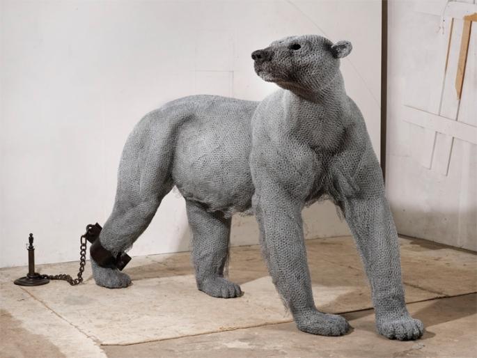 pbear1-big