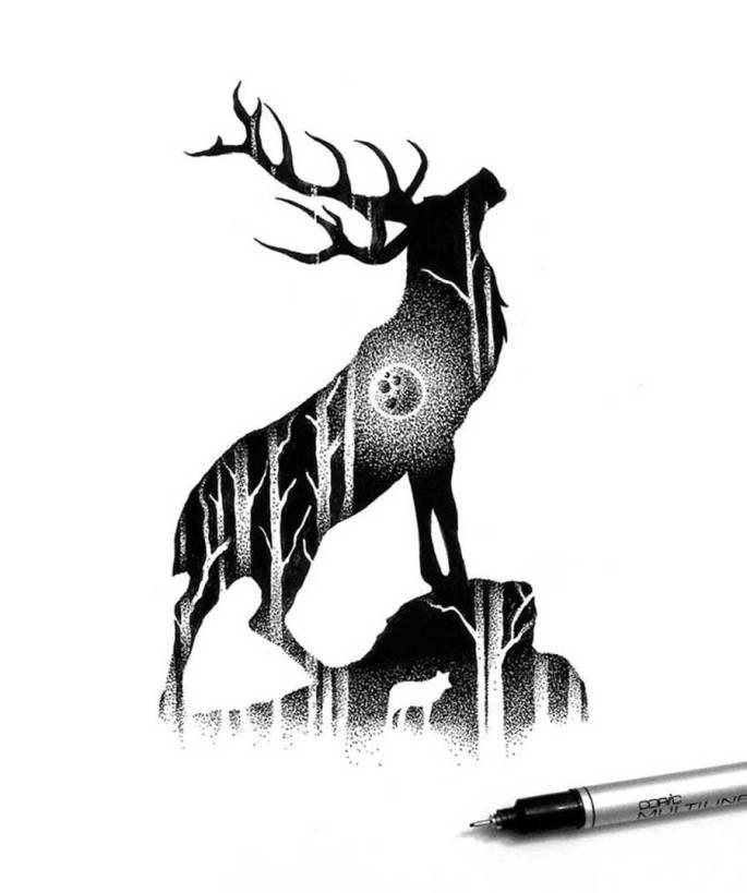 Wilderness-Scenes-Illustrations-574becde4b78b__700