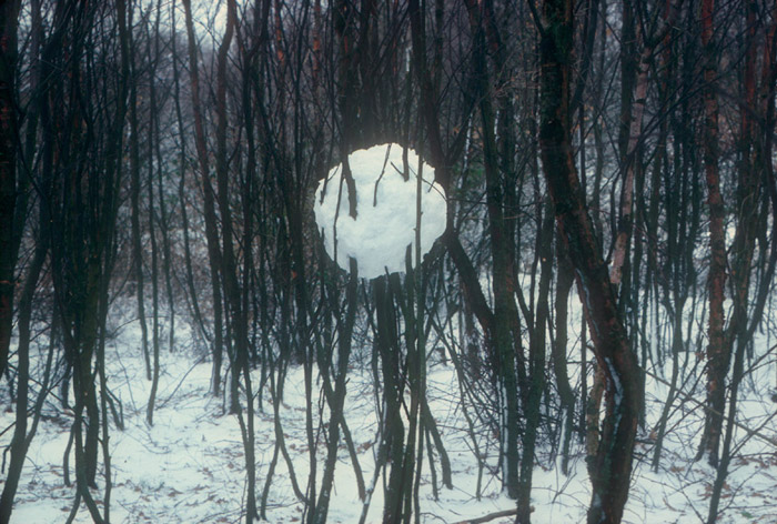 Andy-Goldsworthy-Ice-and-Snow-Sculptures-15