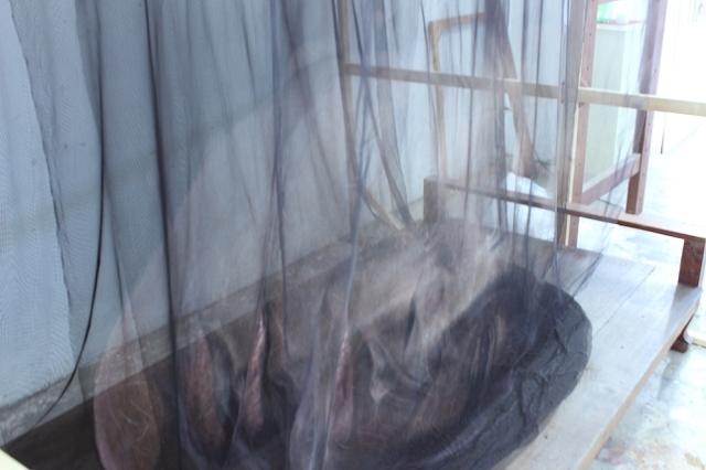 Portrait-Fantome-Toile-3