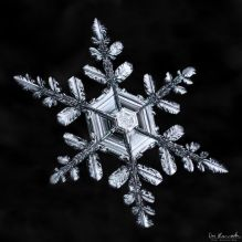 gallery-of-190-of-the-most-amazing-snowflake-pictures-youll-ever-see1__880