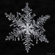 gallery-of-190-of-the-most-amazing-snowflake-pictures-youll-ever-see2__880