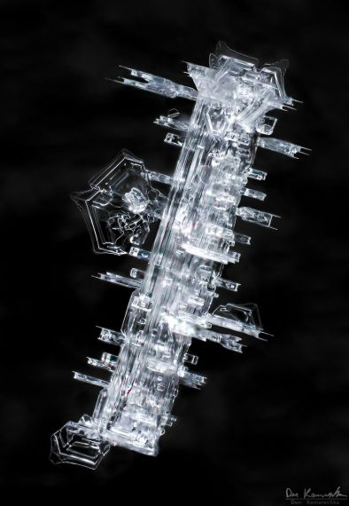 gallery-of-190-of-the-most-amazing-snowflake-pictures-youll-ever-see3__880