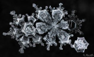 gallery-of-190-of-the-most-amazing-snowflake-pictures-youll-ever-see5__880