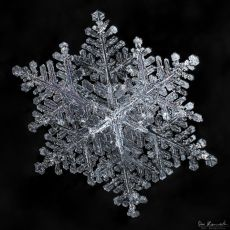 gallery-of-190-of-the-most-amazing-snowflake-pictures-youll-ever-see6__880