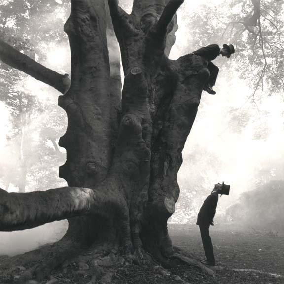 smith+tree