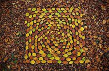 james-brunt-natural-materials-land-art-england-24