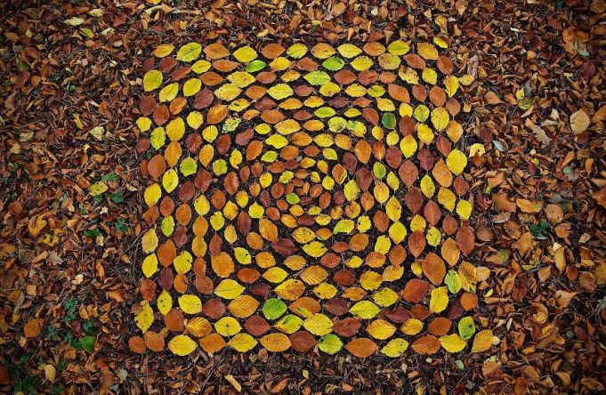 james-brunt-natural-materials-land-art-england-24