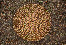 james-brunt-natural-materials-land-art-england21-5a7d95adc3e7d__880
