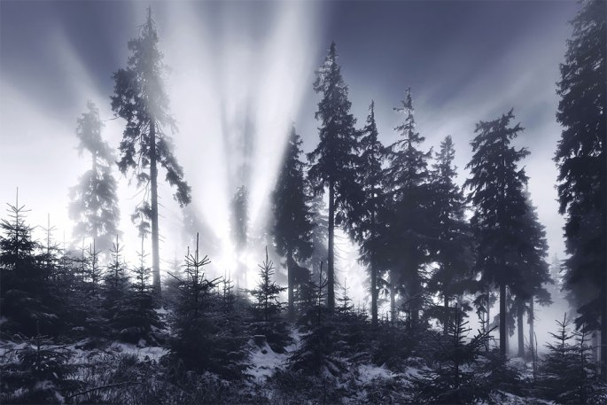 1520004108_333_frozen-landscapes-tell-a-winters-tale-in-new-photographs-by-kilian-schonberger