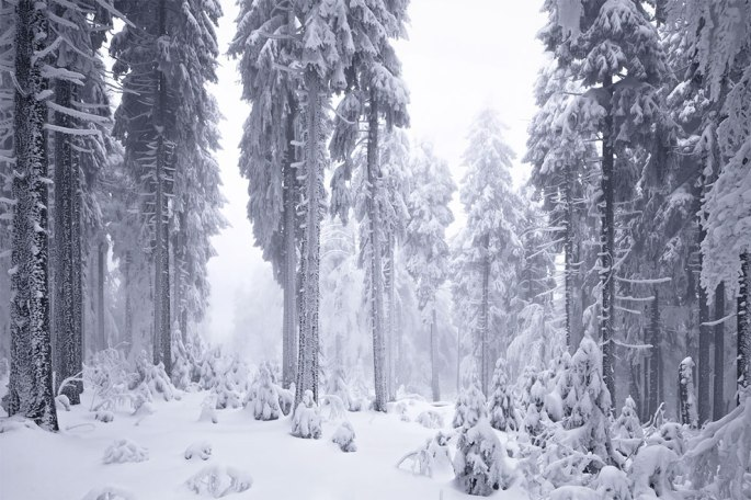 1520004113_184_frozen-landscapes-tell-a-winters-tale-in-new-photographs-by-kilian-schonberger