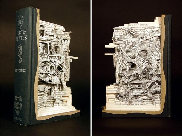 book-surgeon-carvings-art-brian-dettmer-29
