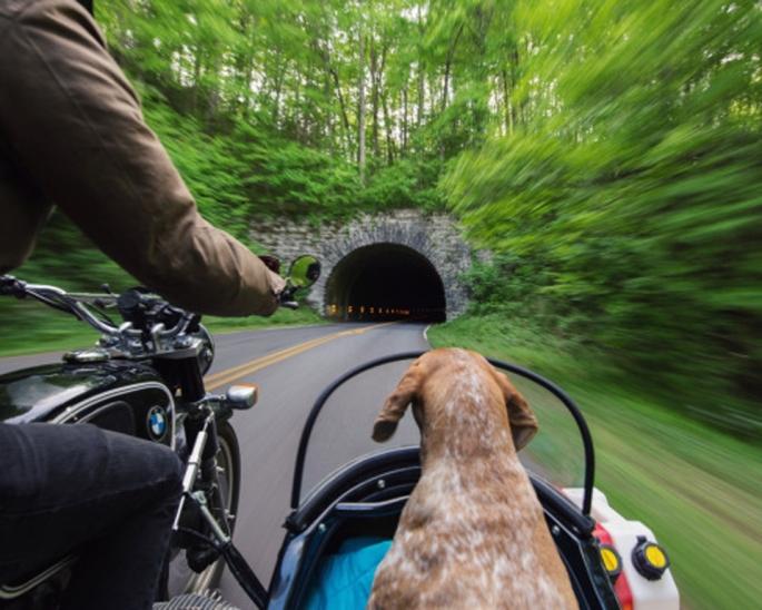 maddie_riding_sidecar