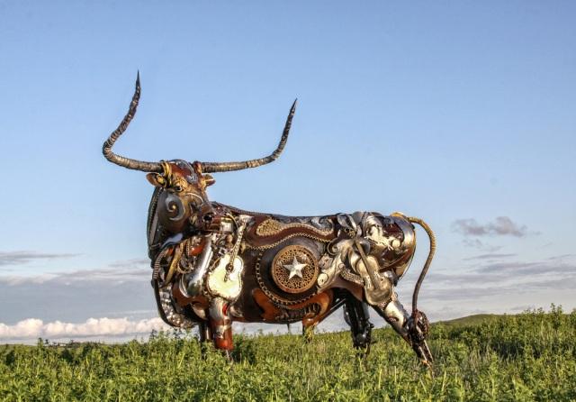 Texas+Longhorn+(2)