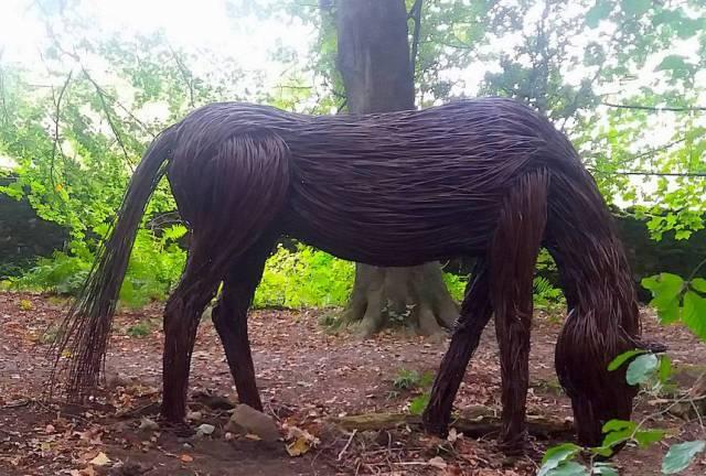 horse.jpg.860x0_q70_crop-scale.jpg