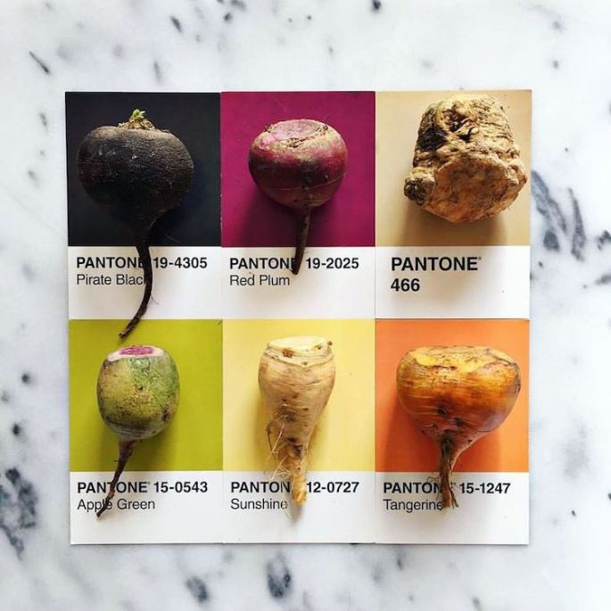 food-pantone-swatches-lucy-litman-4